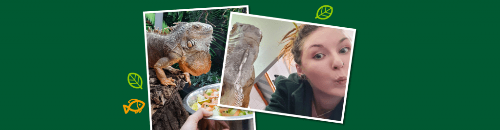 Ausbildung Kauffrau im Einzelhandel Zoo Dehner Garten-Center Aquaristik Reptilien